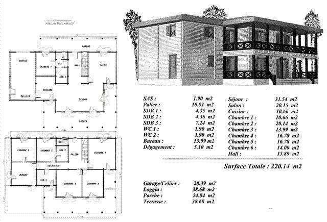 plan maison bois mod le peuplier grande habitation tage. Black Bedroom Furniture Sets. Home Design Ideas